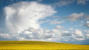 Prognoza pogody na jutro: deszcz przyniesie orzeźwienie